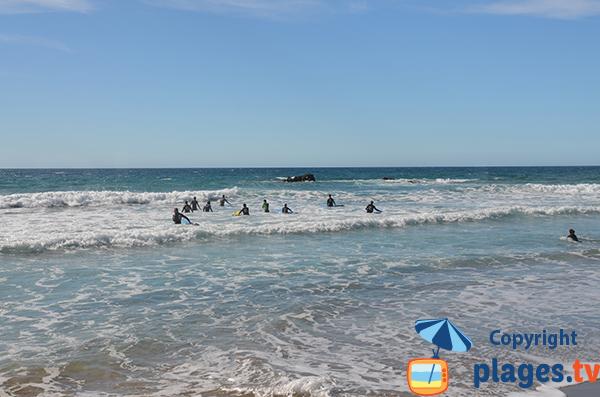 Surfeurs à La Pared - Fuerteventura - Canaries