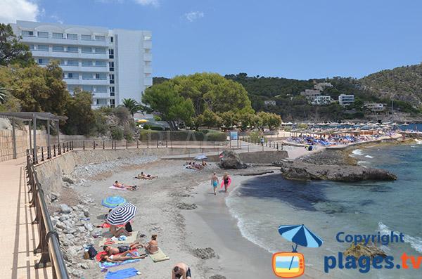 Platja Ses Dones à Es Camp de Mar à Majorque - Espagne