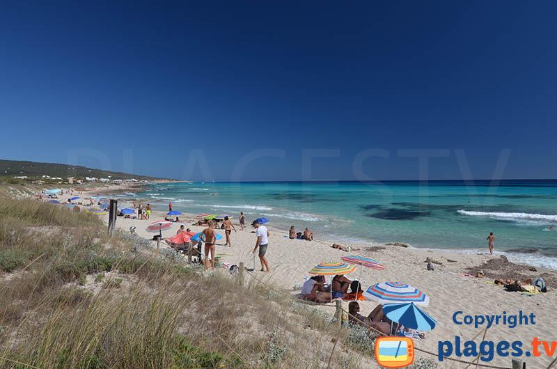 Côte sud de Formentera - Platja de Migjorn