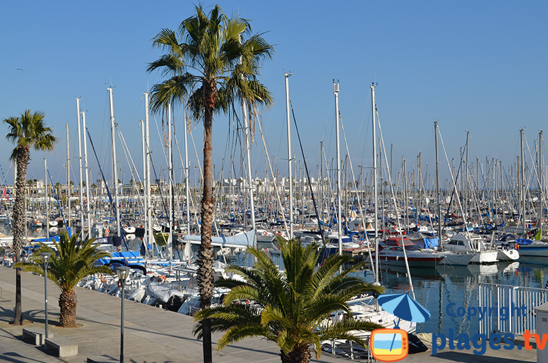 Port de Barcelone en journée