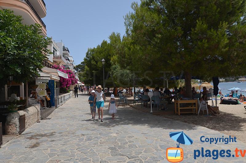 Le bord de mer de Port Pollença à Majorque