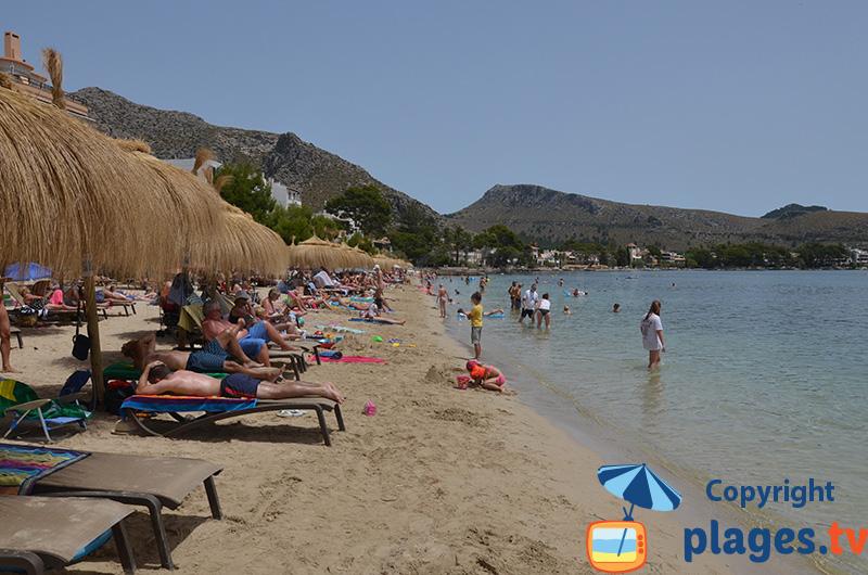 Plage de Port Pollença en été