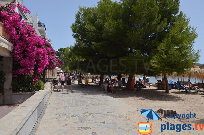 Promenade en bord de mer à Port-Pollença