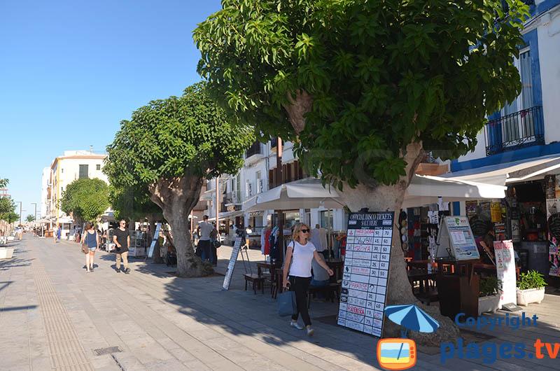 Quartier du port d'Ibiza