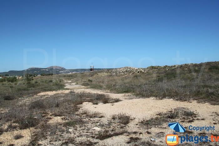 réserve naturelle dels Aiguamolls del Baix Ter - Estartit