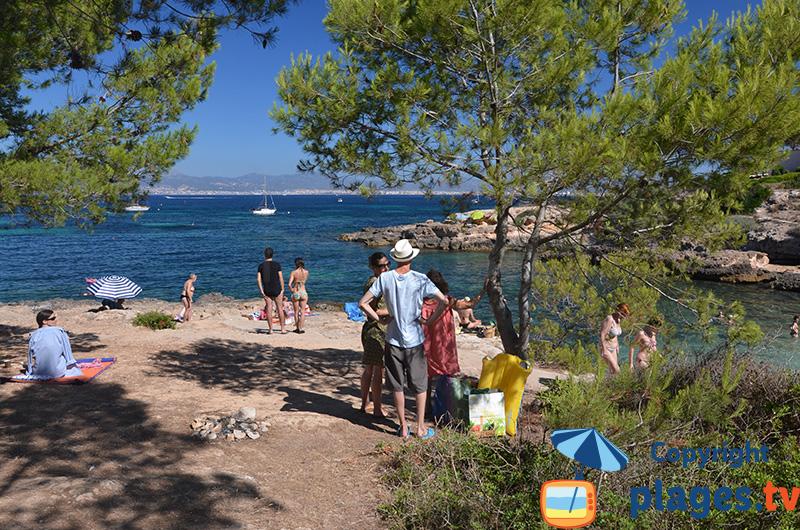 Où faire un pique-nique en bord de mer à Cala Blava