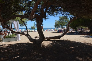 Plages Canyamel